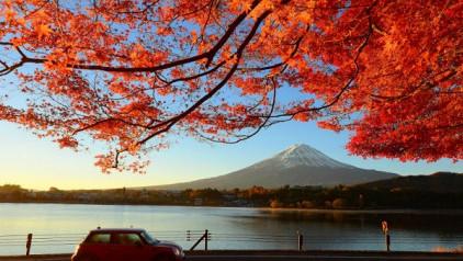 Điểm hẹn tour lá đỏ Hàn Quốc - Nhật Bản