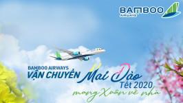 Bamboo Airways cập nhật quy định vận chuyển cành đào, mai Tết 2020