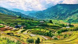 Chi phí bao nhiêu cho một chuyến du lịch Sapa?