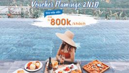 Chỉ từ 800k/người - sở hữu ngay Voucher nghỉ dưỡng tại Flamingo Resort
