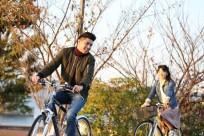 """ĐẸP """"ĐIÊN ĐẢO"""" với mùa thu Hàn - Nhật"""