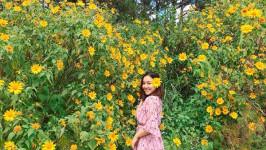 Đẹp siêu lòng với những mùa hoa không thể bỏ lỡ dịp cuối năm
