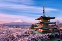 Giấy tờ và thủ tục xin visa Nhật Bản