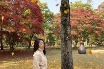 [9X REVIEW] Kinh nghiệm du lịch Hàn Quốc 5N4D theo tour