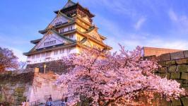 Kinh nghiệm săn vé máy bay đi Osaka giá rẻ