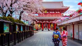 Kinh nghiệm săn vé máy bay từ Hà Nội đi Tokyo Narita giá rẻ