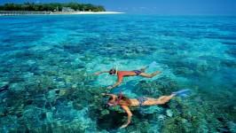 Lặn biển ngắm san hô ở Phú Quốc - tại sao không?