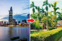 Lịch bay từ Hồ Chí Minh đến Vinh (Cập nhật mới nhất)