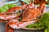 Mê đắm hải sản Phú Quốc