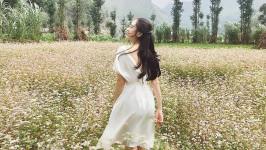 [MỚI NHẤT] Tổng hợp kinh nghiệm du lịch mùa hoa tam giác mạch ở Hà Giang