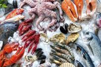 Nên ăn những món gì khi đi du lịch Côn Đảo?