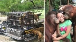 [Nhật ký] Tôi thấy cực LẠ ở Thái Lan- Trải nghiệm thật khi du lịch Thái Lan