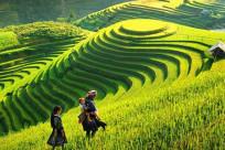 Những địa điểm du lịch quanh Hà Nội vào dịp Tết Dương Lịch không thể bỏ qua