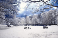 Những địa điểm ngắm tuyết đẹp nhất ở Hàn Quốc