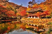 Những điểm du lịch nổi tiếng nào nên ghé thăm khi đi Hàn Quốc?