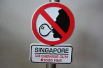 Những hành vi nào sẽ bị phạt ở Singapore?