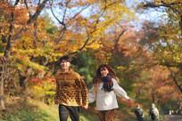 (Ngoisao.net) Những lý do nên đi du lịch vào mùa thu