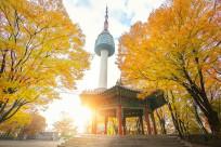 Ở Hàn Quốc có những địa điểm tham quan nổi tiếng nào?