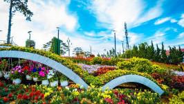 Rực rỡ lễ hội hoa ở Đà Lạt