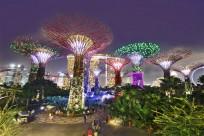 Singapore - Khám phá những sắc màu về đêm