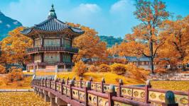 Tất tần tật kinh nghiệm du lịch Hàn Quốc tháng 10: đi đâu? chơi gì?