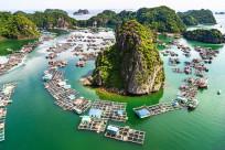 Tham quan Vịnh Lan Hạ - Thiên đường bị lãng quên