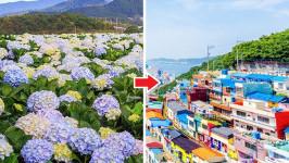 Thời gian bay từ Đà Lạt đến Busan mất bao lâu?