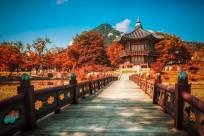Thủ tục xin visa du lịch Hàn Quốc