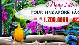 Tour Singapore 3 ngày 2 đêm tiết kiệm dành cho người bận rộn