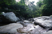 Từ A-Z kinh nghiệm du lịch suối Tiên Quy Nhơn