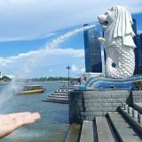Kinh nghiệm du lịch Singapore tự túc từ A đến Z