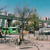 Kinh nghiệm từ A - Z cho người đi du lịch Hàn Quốc lần đầu