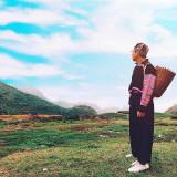 [REVIEW] Kinh nghiệm du lịch Mộc Châu đầy đủ, chi tiết nhất