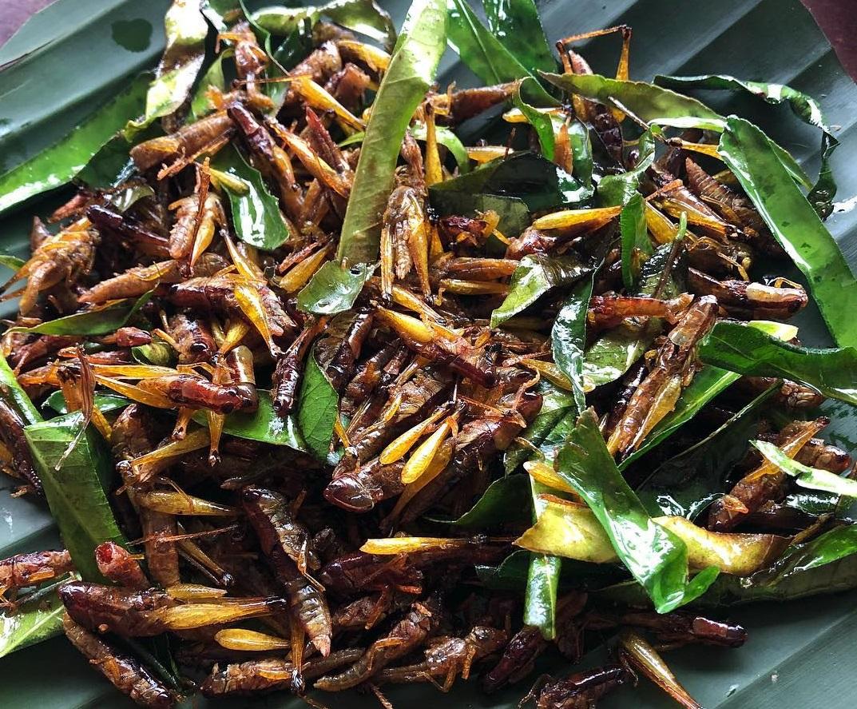 Quán Kiến là một trong 10 quán ăn ngon ở Hồ Tây Hà Nội được yêu thích