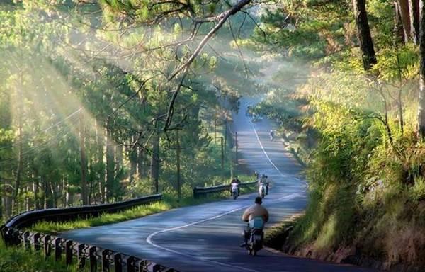 Những con đường uốn lượn thơ mộng ở Đà Lạt