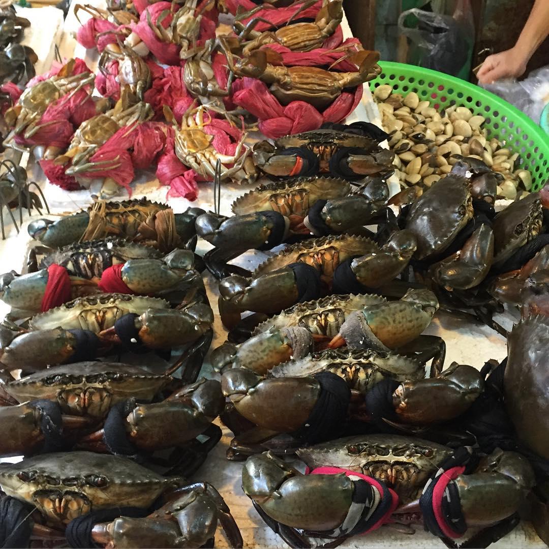 Hải sản Nha Trang tươi ngon