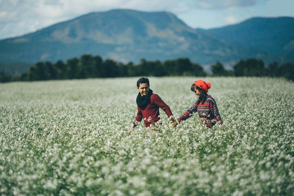 Du lịch Đà Lạt đón mùa hoa cải trắng