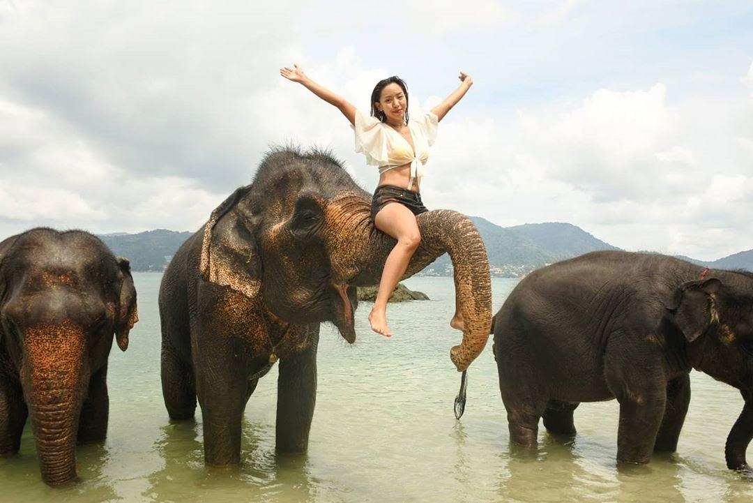 Cưỡi voi là hoạt động được yêu thích trong các chuyến du lịch Phuket của du khách