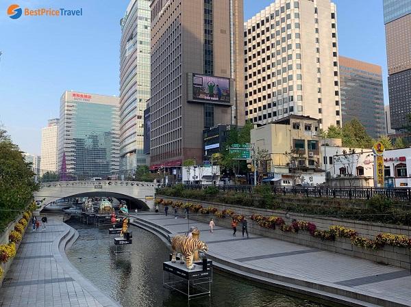 Dòng suối Cheonggyecheon Hàn Quốc