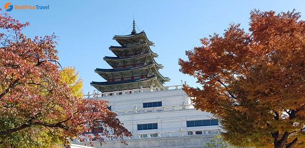 Quang cảnh bên trong cung điện Gyeongbok