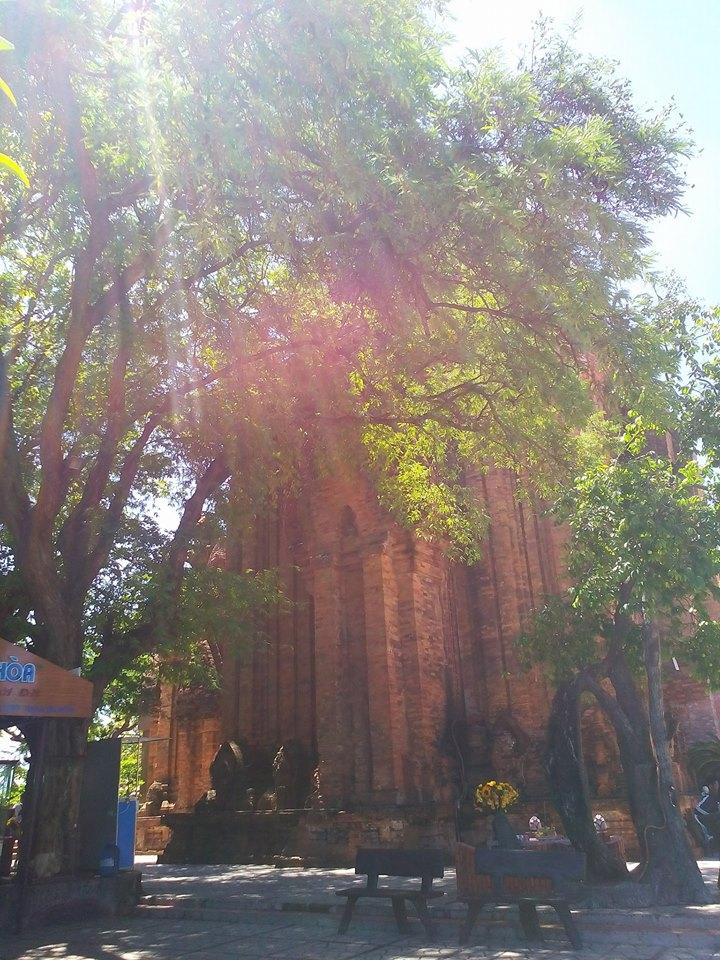 Một góc khác của tháp bà Ponagar đồ sộ