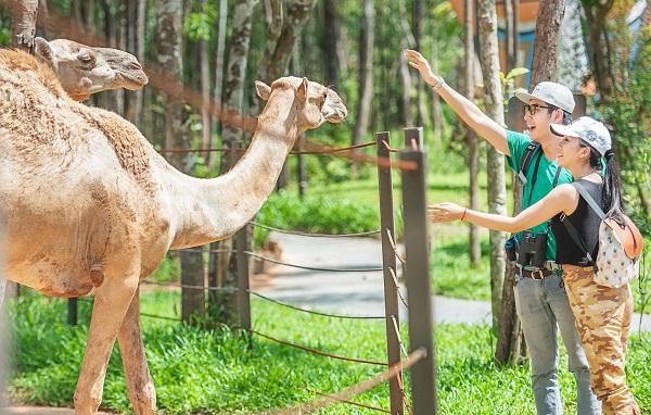 Vinpearl Land Safari Phú Quốc
