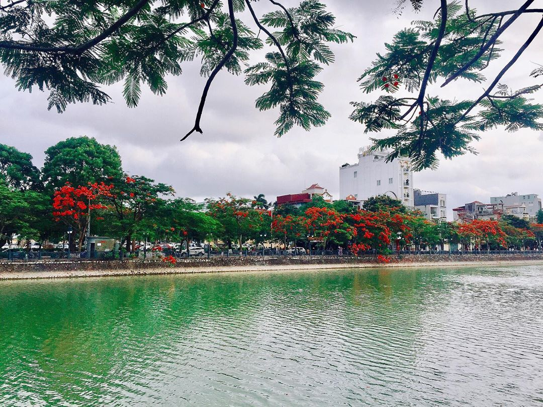 Hải Phòng - Thành phố hoa phượng đỏ