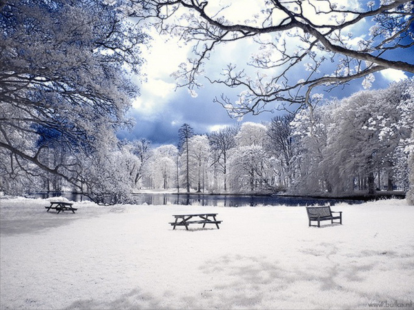 Hàn Quốc mùa tuyết rơi