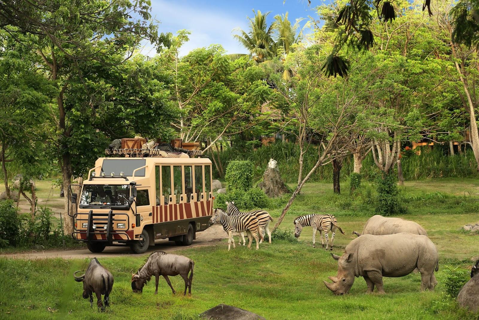 Khu tham quan thú tại Safari Phú Quốc
