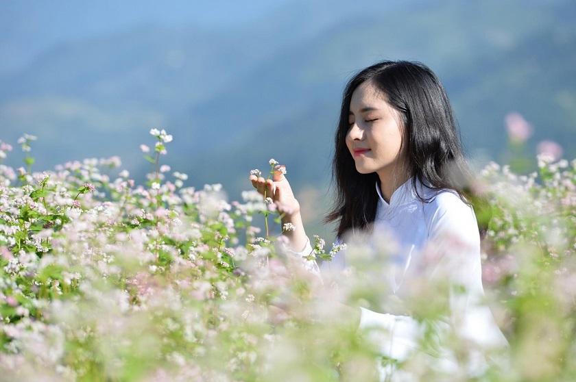 Check-in với hoa tam giác mạch Hà Giang