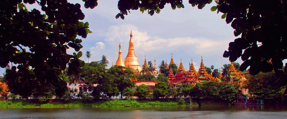 Ngoài ra còn có nhiều ngôi chùa tháp và tượng Phật nằm trong ngôi chùa này.