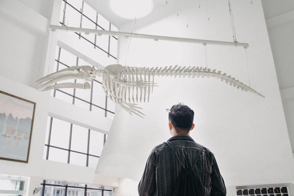 Bên trong Bảo tàng Quảng Ninh