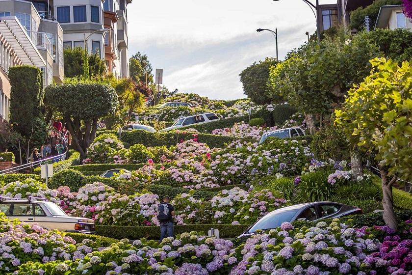 Đường hoa Lombard