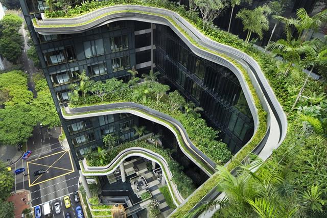 Singapore xanh